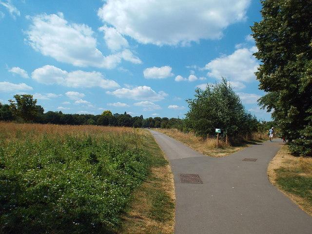Paths in Regent's Park