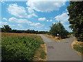 TQ2782 : Paths in Regent's Park by Malc McDonald