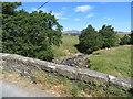 SD7466 : Kettlesbeck Bridge and Ingleborough by John S Turner