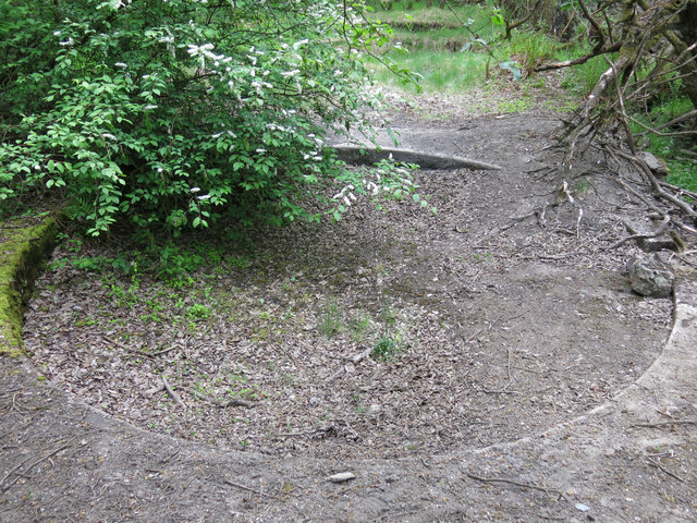 Langley Barony Lead Mine - buddle pit