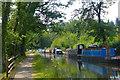 SO3106 : Narrowboats near Goytre Wharf, Monmouthshire and Brecon Canal by Robin Drayton