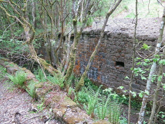 Langley Barony Lead Mine - channel of Honeycrook Burn