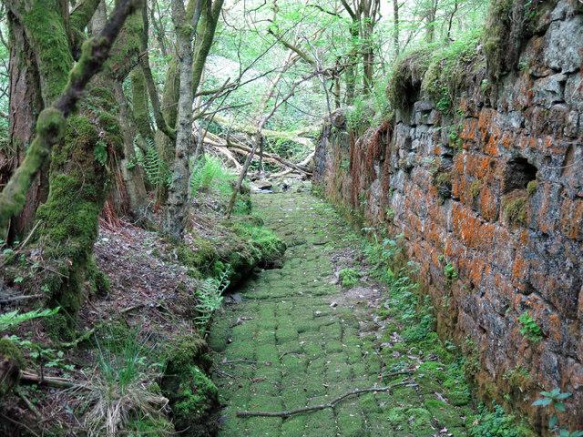 Langley Barony Lead Mine - channel of Honeycrook Burn (3)