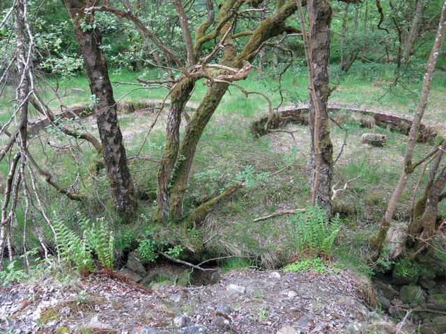 Langley Barony Lead Mine - buddle pits (2)