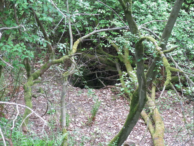 Langley Barony Lead Mine - old mine shaft