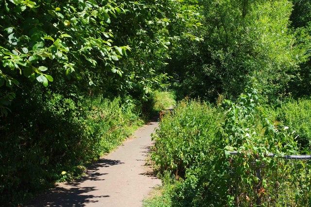 Public footpath in Stevens Park, Wollescote, Stourbridge