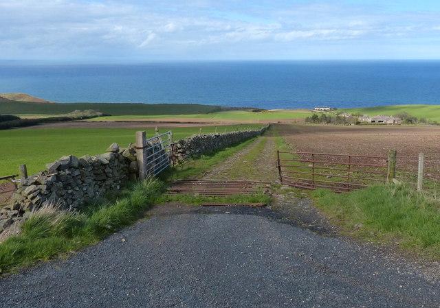Track towards Redheugh Farm