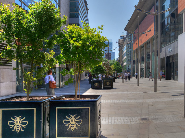 Trees and Planters on New Cathedral Street