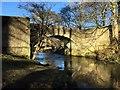 NZ2130 : Trevor's Bridge by David Robinson