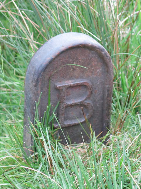 Langley Barony Lead Mine - mineral rights boundary marker