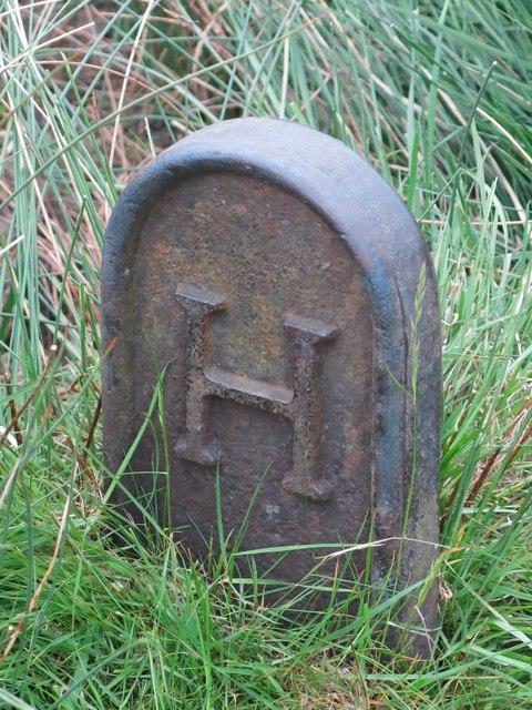 Langley Barony Lead Mine - mineral rights boundary marker (2)