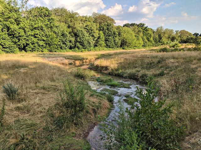 Gatwick Stream in Grattons Park LNR