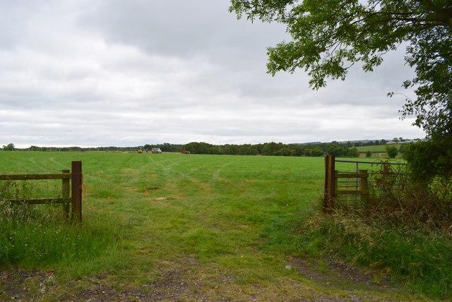 An open field, Mullanatoomog