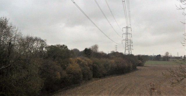 Pylons and hedge