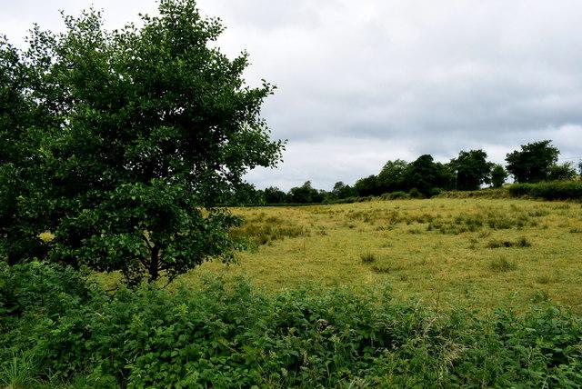 Lisnacreaght Townland