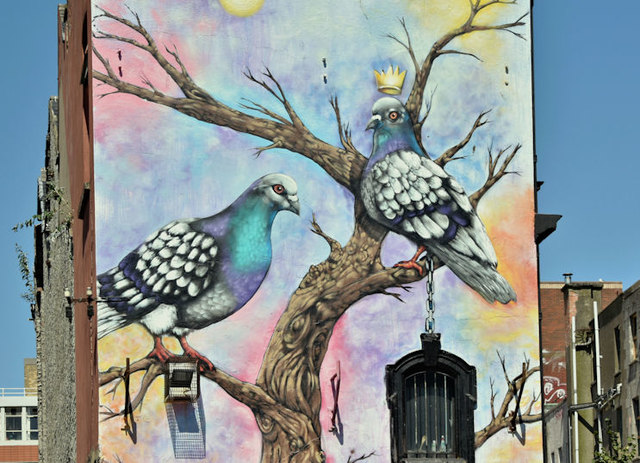 Pigeons mural, Gresham Street, Belfast (July 2018)
