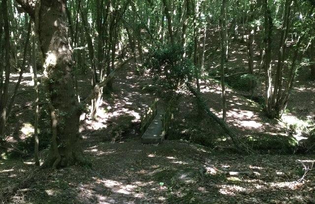 Footbridge in Puridge Wood