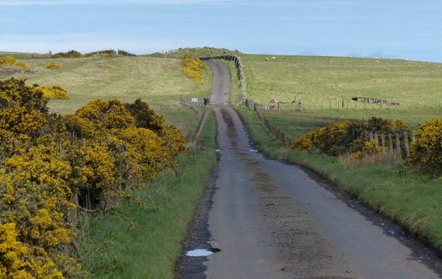 Heading east along Dowlaw Road