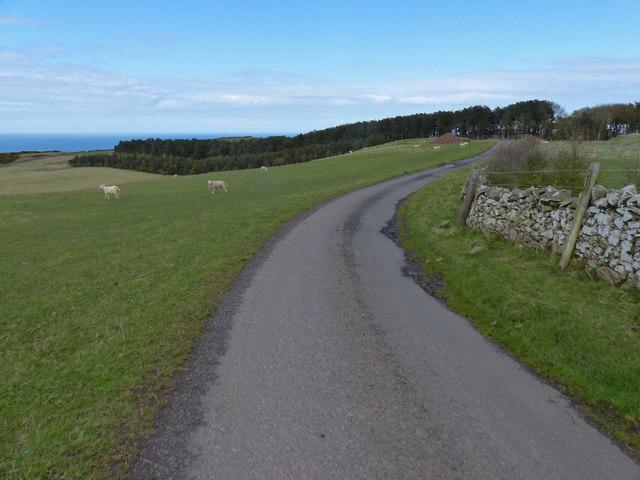 Dowlaw Road at Dowlaw