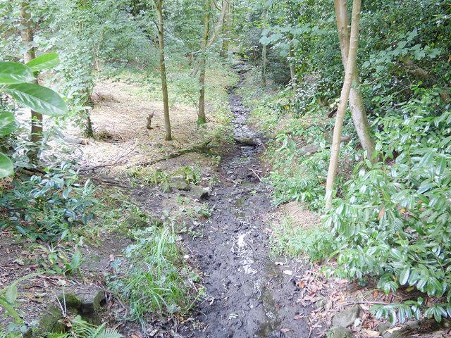 Dry stream in Ram Wood, Roundhay Park