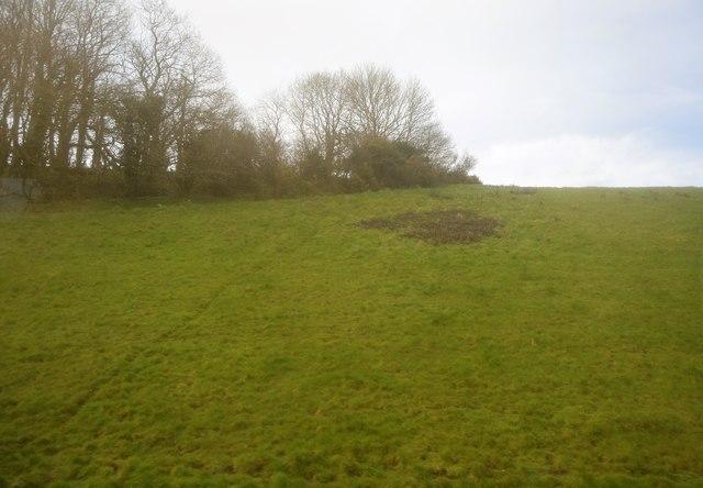 Grassy slope, Whitpot Hill