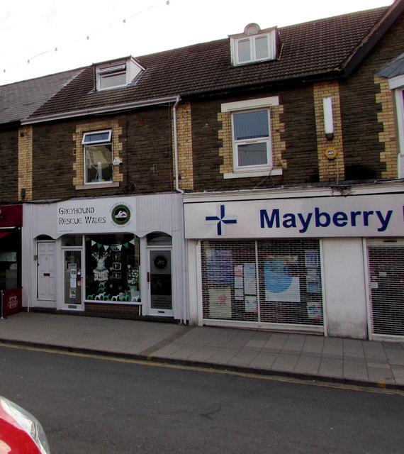 Greyhound Rescue Wales charity shop, 173 High Street, Blackwood