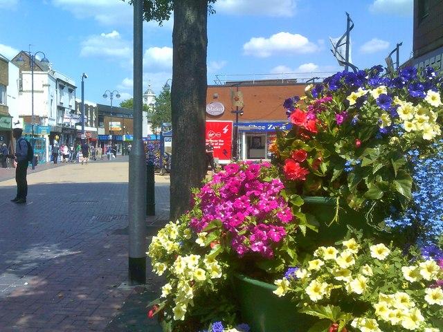 Bilston Blooms View
