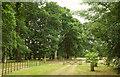 SX8378 : Grounds of Dunley House by Derek Harper