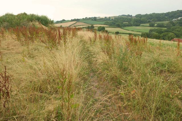 Grass field by Huish Cross
