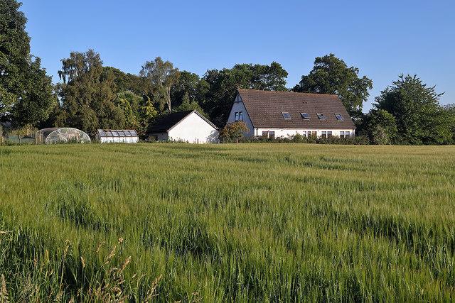 An arable field at Home Farm