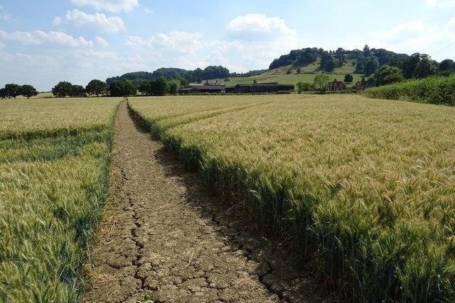 Footpath passing Leyfield Farm