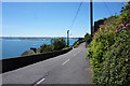 W8066 : East Hill, Cobh by Ian S
