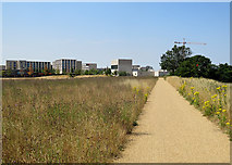 TL4259 : The approach to Eddington by John Sutton