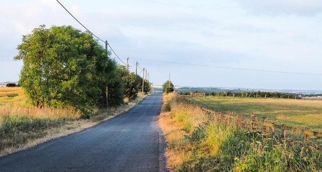 Low-angled sunshine across minor road
