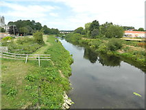 SE4843 : The River Wharfe, Tadcaster by John Lord