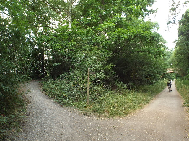 Forest Way, near East Grinstead
