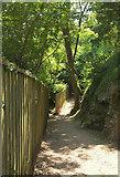 SX9364 : Footpath from Kent's Cavern by Derek Harper