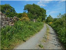 NS3977 : The eastern end of the Howgate by Lairich Rig