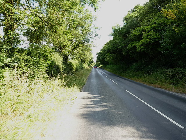Forest Road north towards Dunstall Cross