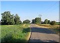 TL5263 : Fen Road near Jack of Clubs Farm by John Sutton
