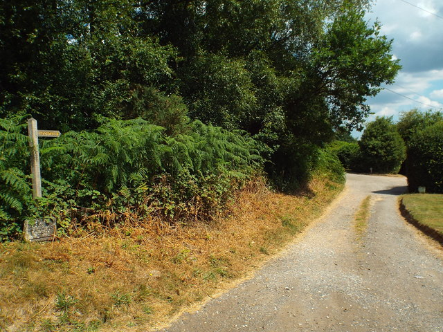 Driveway and footpath, Ashdown Forest