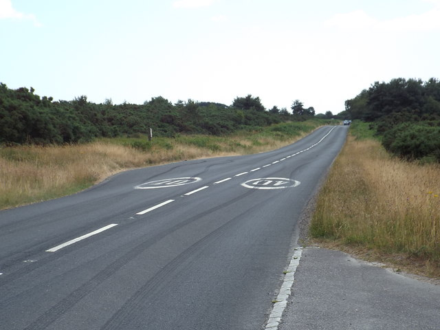 B2026 in Ashdown Forest