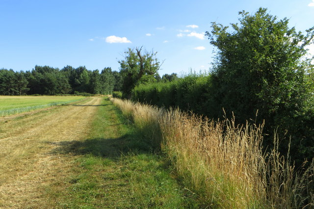 Footpath by Grendon Brook