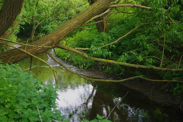 Shill Brook near Bampton, Oxon