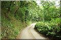 SX8379 : Lane to Frost Farm by Derek Harper