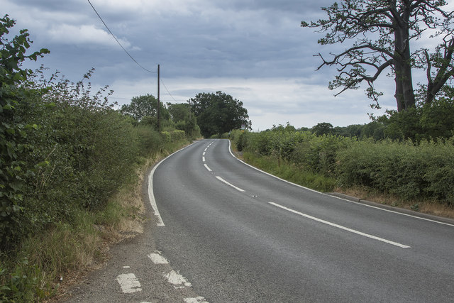 The road from Cowers Lane