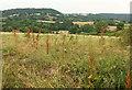 SX8479 : Field near Huish Cross by Derek Harper