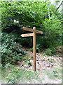 ST4854 : Footpath sign, Black Rock by PAUL FARMER