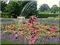 SO5721 : Rose garden at Hill Court by Jonathan Billinger