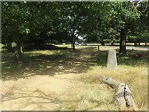 TQ1873 : Pathway passing the Richmond Hill Triangulation Pillar by Peter Wood